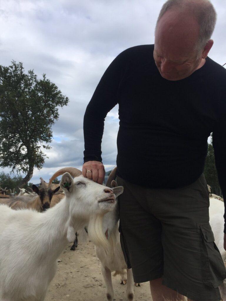 Lars cuddling the goats at Øverdalssetra